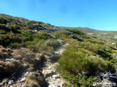 La Serrota - Valle de Amblés; dehesa boyal alpujarra granadina valdemaqueda navaconcejo